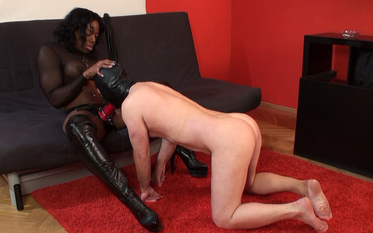 Black mistress fucking a dildo on his face 6
